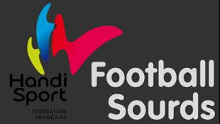 Logo cffs new png
